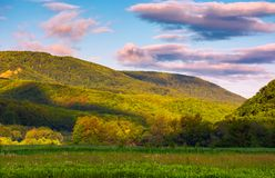 Beautiful mountainous countryside at sunrise. Lovely summer landscape with pink clouds Stock Image