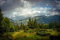 Beautiful mountains and blue sky in the Carpathians. Ukraine. royalty free stock photos