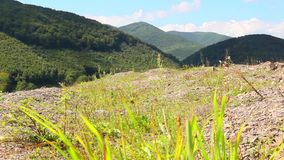 Beautiful mountains with green grass stock footage
