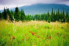 Beautiful Mountains Landscape Royalty Free Stock Photos