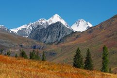 Beautiful mountains landscape. Altay Stock Photos