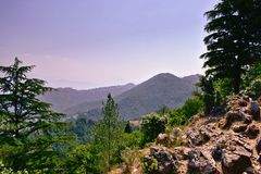 Beautiful mountains landscape scenery with rocks and trees stock images