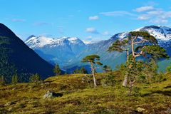 Beautiful mountains. On top of a mountain in Norway, 2015 Royalty Free Stock Image