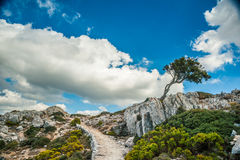 Beautiful mountains on the western part of Mallorca island, Spai Royalty Free Stock Image