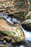 Beautiful Moutain Creek Stock Image
