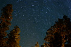 Beautiful Movement. Another long exposure of the stars movement in the night sky, Aspen, Arizona Royalty Free Stock Photos