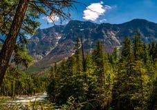 Beautiful Mt. Brown Rises above Lake McDonald Creek stock photo