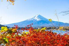 Beautiful Mt.Fuji with red maple leaf in autumn in Japan royalty free stock photos