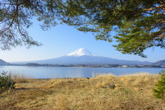 Beautiful Mt. Fuji reflected in Lake Kawaguchi. At japan royalty free stock images