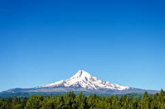 Beautiful Mt. Hood Royalty Free Stock Photography