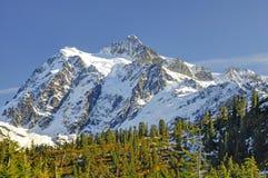 Beautiful Mt. Shuksan in Autumn Stock Photography
