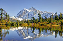Beautiful Mt. Shuksan Reflecting on Picture Lake Royalty Free Stock Image