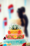 Beautiful multi-tiered wedding cake and couple Royalty Free Stock Images
