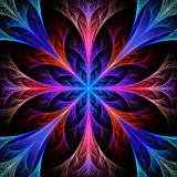 Beautiful Multicolor Fractal Flower. Collection - Frosty Pattern Royalty Free Stock Image