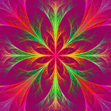 Beautiful multicolor fractal flower. Collection - frosty pattern Stock Images
