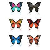 Vector butterflies on a white background. Beautiful, multicolored butterfly, vector image. On a white background Royalty Free Stock Images