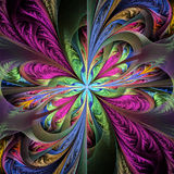Beautiful multicolored fractal flower. Collection - frosty patte Stock Images