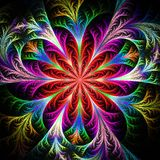 Beautiful multicolored fractal flower. Collection - frosty patte Stock Photo