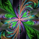 Beautiful multicolored fractal flower. Collection - frosty patte Stock Photos
