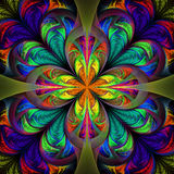 Beautiful multicolored fractal flower. Collection - frosty patte Royalty Free Stock Photo