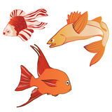Beautiful multicolored iridescent emotional fish. Vector illustration Royalty Free Stock Images