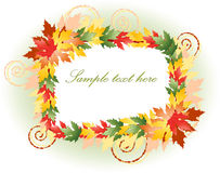 Beautiful multicoloured floral frame Stock Photos