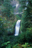Beautiful Multnomah Falls Royalty Free Stock Photos