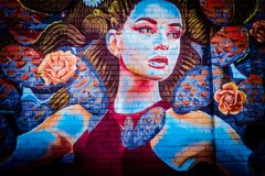 Beautiful Mural of a Woman royalty free stock photos