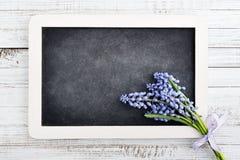 Beautiful muscari bouquet with blank blackboard Stock Photo