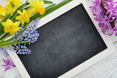 Beautiful muscari bouquet, daffodils and hyacinth Royalty Free Stock Photography