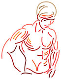Beautiful muscles. Line art brush stroke image of human body muscles Stock Photography