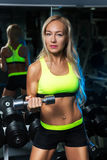 Beautiful muscular fit woman exercising building muscles Stock Photo