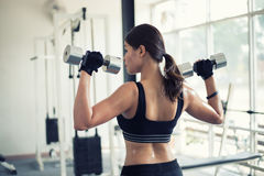 Beautiful muscular fit woman exercising building muscles and fit. Ness woman doing exercises in the gym. Fitness - concept of healthy lifestyle,soft focus Stock Photos