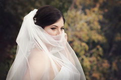 Beautiful mysterious bride Stock Image