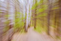 Beautiful mysterious color season forest with road. Vintage filter. Used royalty free stock photos