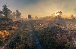 Beautiful mystical landscape Stock Photo