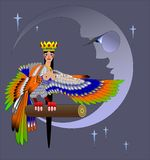 beautiful mythical bird at night vector illustration