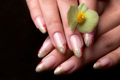 Beautiful nails Royalty Free Stock Image