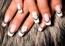 Beautiful nails stock image