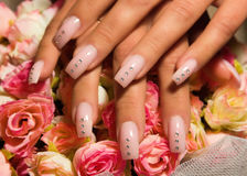Free Beautiful Nails With Art Royalty Free Stock Photo - 14456805