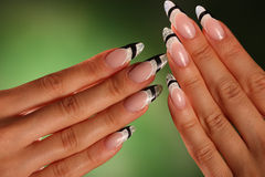 Beautiful nails of Young woman Stock Images
