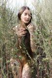 Beautiful naked woman among the grass Stock Photo