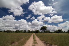 Beautiful Namibian cloudscape Royalty Free Stock Photo