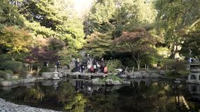 Beautiful national park in London with a small pond and families walking around it on green trees background. Action
