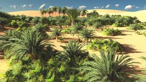 Beautiful natural background -African oasis 3d rendering. Beautiful natural background -African oasis Stock Photo