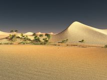 Beautiful natural background -African oasis 3d rendering. Beautiful natural background -African oasis Stock Photography