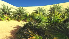 Beautiful natural background -African oasis 3d rendering. Beautiful natural background -African oasis Royalty Free Stock Photography