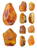 Beautiful natural Baltic amber Stock Image