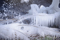 Beautiful Natural Ice Ornaments on the Trees Royalty Free Stock Photos