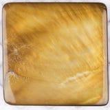Beautiful natural nacreous plate ocher brown Royalty Free Stock Photo